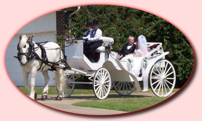 Picking Up Bride And Father Welcome To Carriage Memories Horse Drawn Service